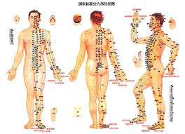Acupuncture meridian images